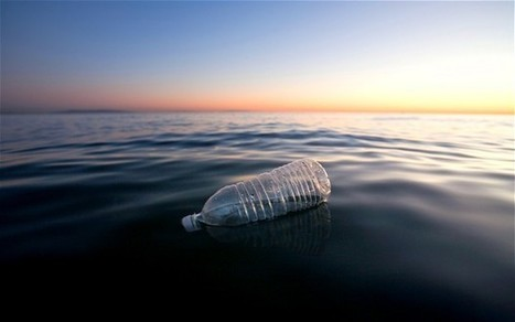 More plastic than fish in the oceans by 2050, report warns | Banco de Aulas | Scoop.it