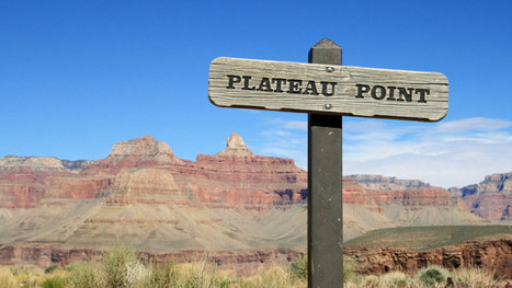 3 Things You Can Do To Push Through Your PPC Plateau | SEM & Adwords: Learning.it | Scoop.it