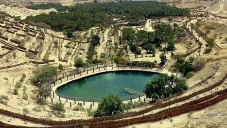 Découverte d'un site préhistorique en Tunisie | Histoire et Archéologie | Scoop.it