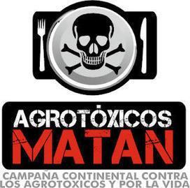 Argentina: La contaminación en las aulas | Nuevos modelos alimentarios y agropecuarios | Scoop.it