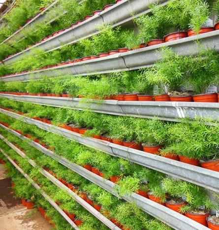 Recycle Gutters Into A DIY Vertical Shade Garden   Everyday Gardeners   Annie Haven   Haven Brand   Scoop.it