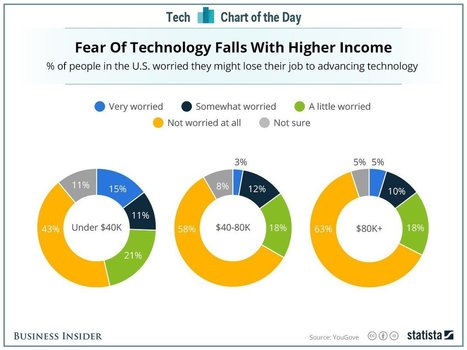 The more you earn, the less worried you are about tech stealing your job   Digital Transformation of Businesses   Scoop.it