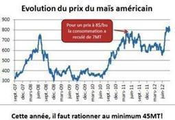 Campagne de maïs 2012/2013 - Les Usa peinent à réduire de 25 Mt leur consommation selon Oda - Agrisalon | Actualité de l'Industrie Agroalimentaire | agro-media.fr | Scoop.it