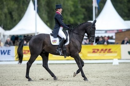 Opposition Buzz 'is fine' after rotational fall in Germany -- Horse and Hound | Fran Jurga: Equestrian Sport News | Scoop.it