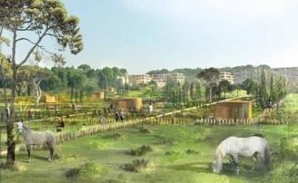 Ilex - paysages & urbanisme | Urbanisme | Scoop.it