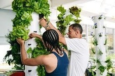 School garden rock star Stephen Ritz sows seeds of change in Vegas | Vertical Farm - Food Factory | Scoop.it