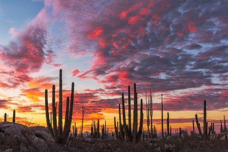 """Baja"" by Christian Heeb on 500px   Baja California   Scoop.it"