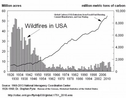 Global Warming Did Not Make 2015 The Worst Year Ever For Wildfires | Timberland Investment | Scoop.it