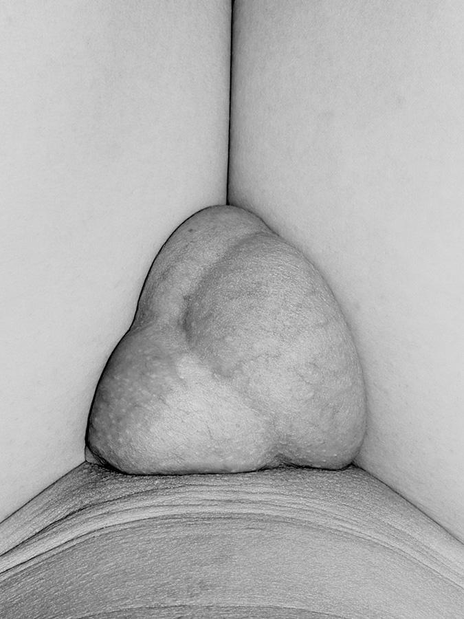 Genitalien-10.jpg