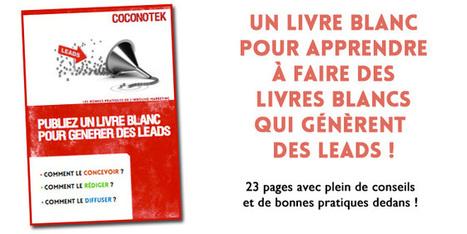 Publiez un livre blanc pour générer des leads ! | inbound marketing | Scoop.it