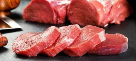 Manger trop de viande rouge serait toxique pour les reins | Veganisons! | Scoop.it