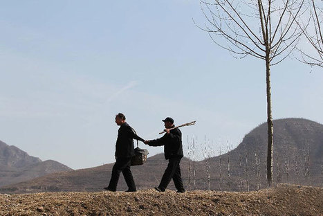 Blind Man And His Armless Friend Spend 10 Years Planting 10,000 Trees In China | Coffee Break Ezine | Scoop.it