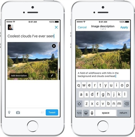 Twitter ajoute une description de 420 caractères aux images | Tendance, blog, photo | Scoop.it
