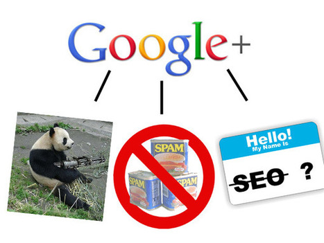 Big List of Local SEO's To Follow On Google+ Some Thoughts | Nifty Marketing | Local Search Marketing Ideas | Scoop.it