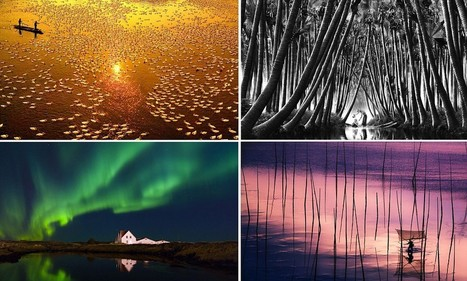 Which of these do you think is worth £76,000? Winning entries for the world's biggest prize in photography | Photography | Scoop.it