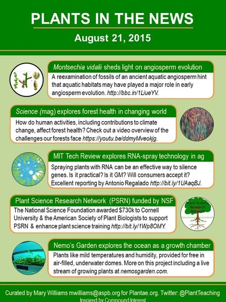 Plants in the News, August 21 2015 | Plant Science Today | Plant Biology Teaching Resources (Higher Education) | Scoop.it
