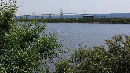 Pont de l'Île | The Blog's Revue by OlivierSC | Scoop.it