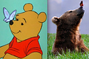 21 Pictures Of Adorable Disney Animals In Real Life | Wild Life#1 | Scoop.it
