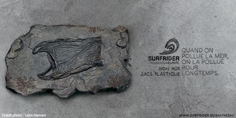Non aux sacs plastique - - Surfrider Foundation Europe | Associations, bénévolat, solidarité et philanthropie | Scoop.it
