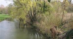 Nitrates - Révision des zones polluées ou menacées dans les six bassins fluviaux | Toxique, soyons vigilant ! | Scoop.it