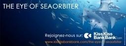 La sentinelle des océans, SeaOrbiter a besoin de nous | SeaOrbiter | Scoop.it