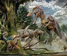 Dinosaurs fell victim to perfect storm of events | Sustain Our Earth | Scoop.it