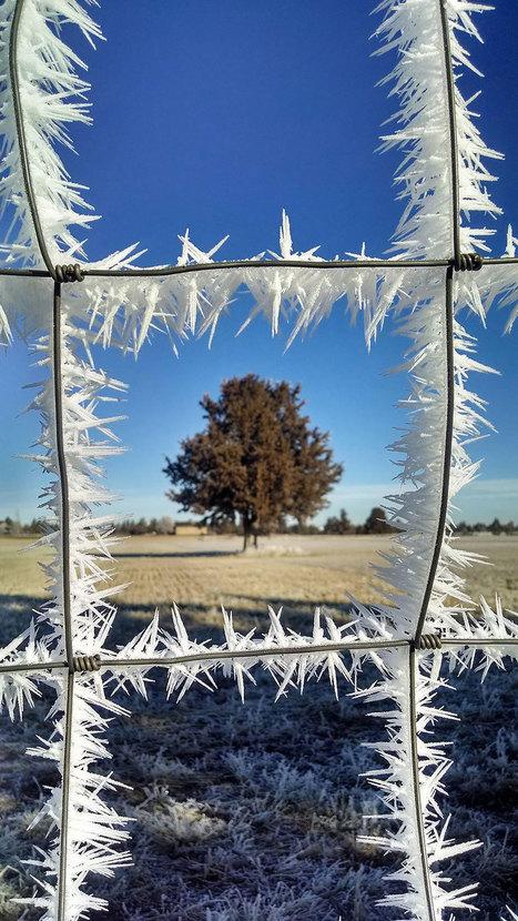 33 splendides oeuvres d'art en glace réalisées d'une main de maître par Mère Nature | Histoire des arts 3e | Scoop.it