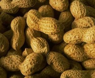 Les micronutriments - Les aliments riches en Coenzyme Q10 | Végétarisme, santé et vie | Scoop.it