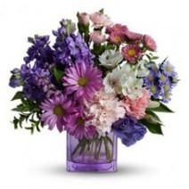 Heart's Delight   Visual.ly   surrey flowers   Scoop.it