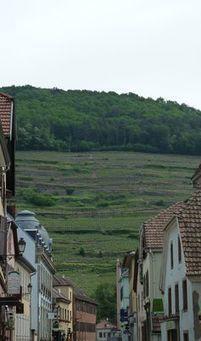 Les terroirs, une place à part dans lamondialisation agricole | Le Vin et + encore | Scoop.it