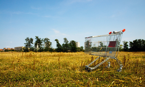 3 Unexpected Reasons Your Customers Abandon Cart | Gigya's Blog | Ecom Revolution | Scoop.it