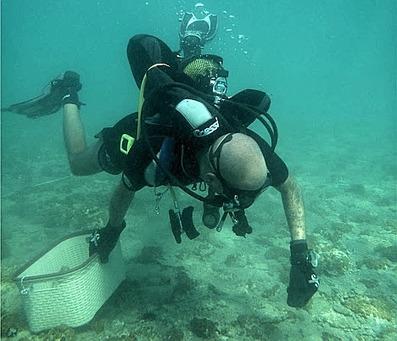 #Bronze #Age #Greek city found #underwater | travelling 2 Greece | Scoop.it