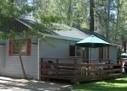 Possum Guests 2 | BIG BEAR CABINS 1-800-381-5569 | Big Bear Cabins | Scoop.it
