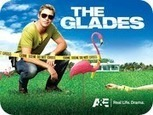 Watch Full Episodes Online Free - Click TV: Download The Glades Season 4 Episode 13 (S04E13) Tin Cup | Watch TV Shows New Episodes Online | Scoop.it