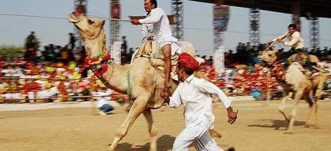 Get memorable experience with camel mela: | Travel Company in India | Scoop.it