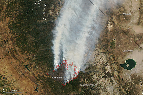 Rim Fire, California : Natural Hazards | natural disasters | Scoop.it