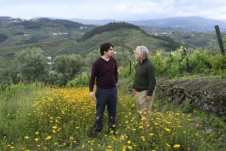 Quinta da Gaivosa | The Douro Index | Scoop.it