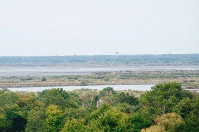 À la découverte des zones humides | Le Bassin d'Arcachon | Scoop.it