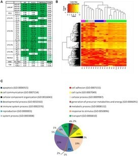 mRNA-Sequencing of Single Prostate Cancer Circulating Tumor Cells | Amazing Science | Scoop.it
