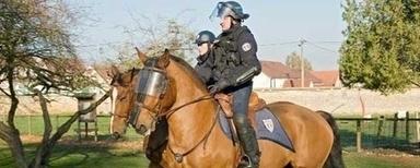 Policier en brigade équestre, cela vous tente ?   Fonction publique, droit, justice, défense, sécurité   Scoop.it