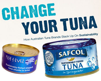 "Greenpeace reveals third canned tuna ranking, Safcol moves up - FIS | ""Environmental, Climate, Global warming, Oil, Trash, recycling, Green, Energy"" 