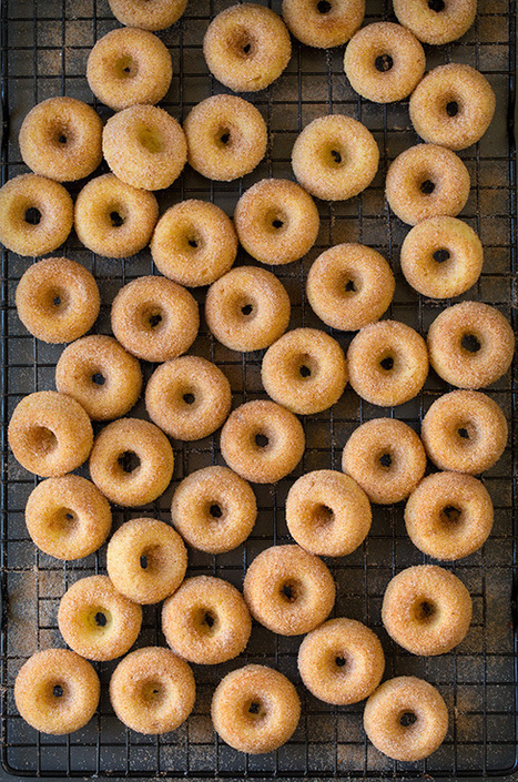 Baked Cinnamon Sugar Mini Donuts - Cooking Classy | Passion for Cooking | Scoop.it