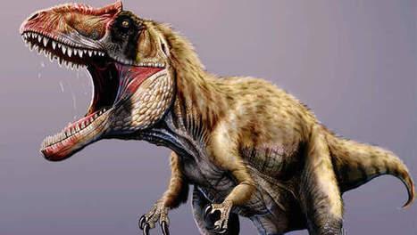 Fossiel van reusachtige vleesetende dinosaurus ontdekt | KAP-DeBrandtJ | Scoop.it