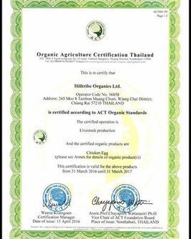 Social enterprise Hilltribe Organics is 1st chicken farm in Thailand to receive Organic Agriculture Certification Thailand | Inclusive Business in Asia | Scoop.it