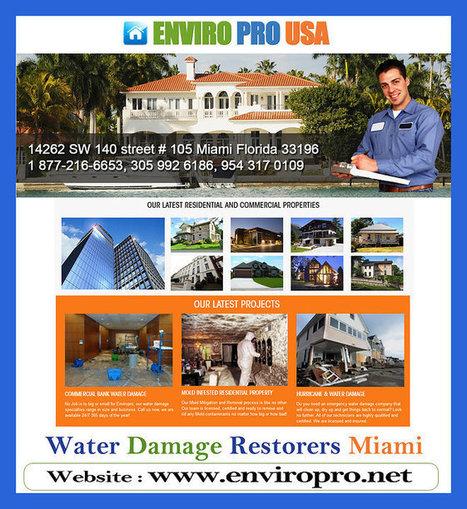 Engineered Wood Flooring Installation Miami | Enviropro | Scoop.it
