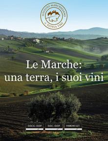 Le Marche: una terra, i suoi vini - l'iBook   Vini & tipicità della regione Marche   Scoop.it