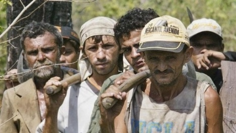 340 Brazilian Companies Fined for Modern Slave Labor Conditions | Global politics | Scoop.it