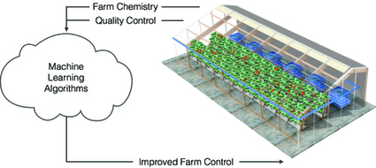 Vertical Farming Technology Trends | Culture and Story | Scoop.it