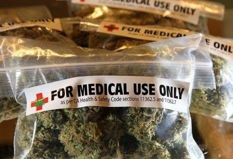 The California-Colorado Cannabis War | TheVegas420 | Scoop.it