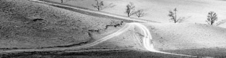 Abbas Kiarostami - A Photographic Overture   Photoinfos   Scoop.it